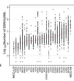 Bimodal Distribution of Mutations in MCC